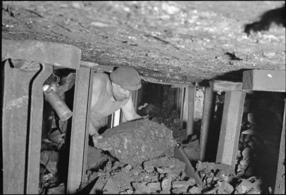 A miner searches for a writing job online